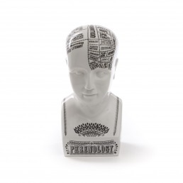 Bust Seletti By Petrantoni Phrenology